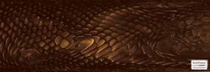 Juma Golden dragon panel pár, 10mm